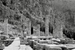 Delphi-03778
