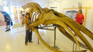 Jamaliah with whale skeleton