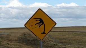 Special sign for the wind